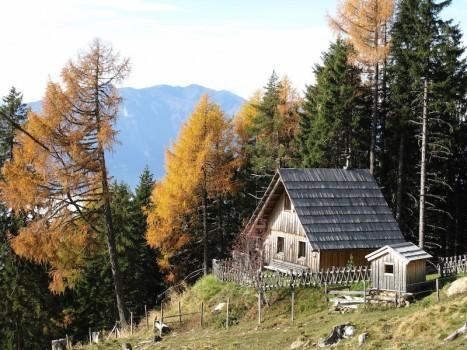 Kleinod – Bergchalet auf der Millstätteralm in Österreich